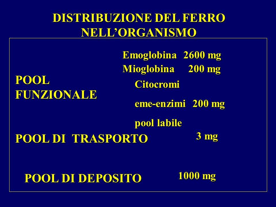 DISTRIBUZIONE DEL FERRO NELLORGANISMO POOL FUNZIONALE POOL DI TRASPORTO POOL DI DEPOSITO Emoglobina 2600 mg Mioglobina 200 mg Citocromi eme-enzimi 200