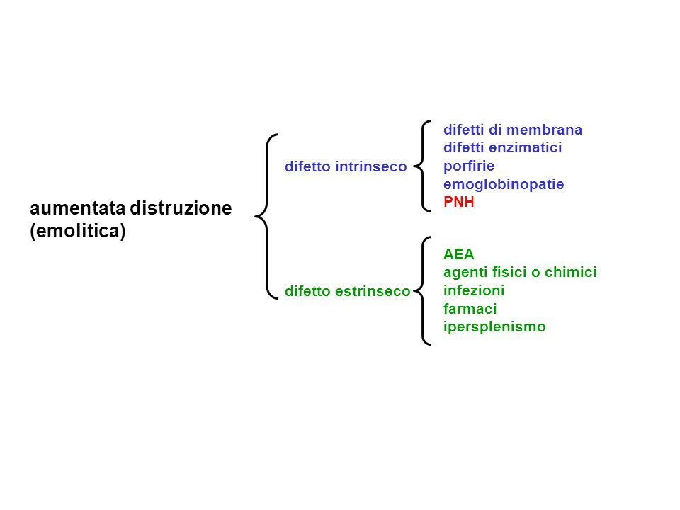 GLUCOSE-6-PHOSPHATE DEHYDROGENASE; G6PD (II) Skin : Jaundice GI : Splenomegaly Cholelithiasis Cholecystitis Heme: Congenital nonspherocytic hemolytic anemia Episodic hemolytic anemia Normocytic anemia Normochromic anemia Favism Primaquine sensitivity Drug-sensitive hemolytic anemias Lab : Glucose-6-phosphate dehydrogenase (g6pd) deficiency Normal osmotic fragility