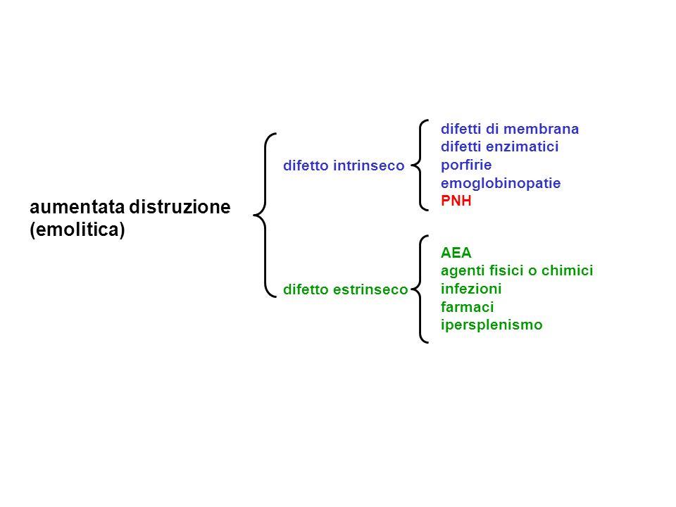 aumentata distruzione (emolitica) difetto intrinseco difetto estrinseco difetti di membrana difetti enzimatici porfirie emoglobinopatie PNH AEA agenti