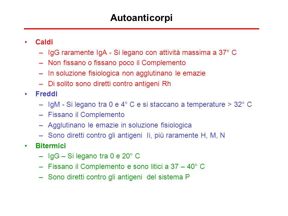 Autoanticorpi Caldi –IgG raramente IgA - Si legano con attività massima a 37° C –Non fissano o fissano poco il Complemento –In soluzione fisiologica n