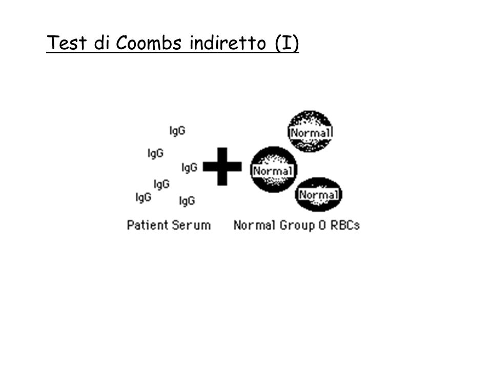 Test di Coombs indiretto (I)