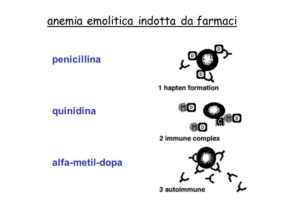anemia emolitica indotta da farmaci penicillina quinidina alfa-metil-dopa
