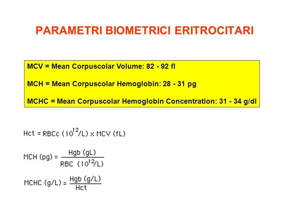 PARAMETRI BIOMETRICI ERITROCITARI MCV = Mean Corpuscolar Volume: 82 - 92 fl MCH = Mean Corpuscolar Hemoglobin: 28 - 31 pg MCHC = Mean Corpuscolar Hemo