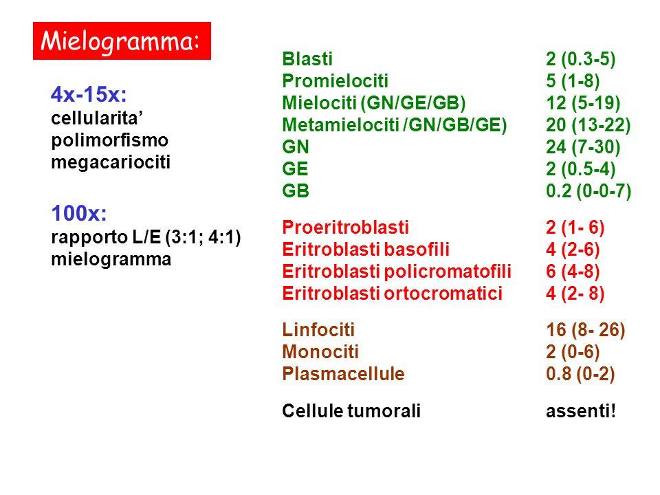 Mielogramma: 4x-15x: cellularita polimorfismo megacariociti 100x: rapporto L/E (3:1; 4:1) mielogramma Blasti2 (0.3-5) Promielociti5 (1-8) Mielociti (G