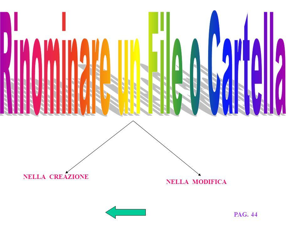 TITOLO PERCORSO TIPO DIMENSIONE DATA CREAZIONE E MODIFICA PAG.44