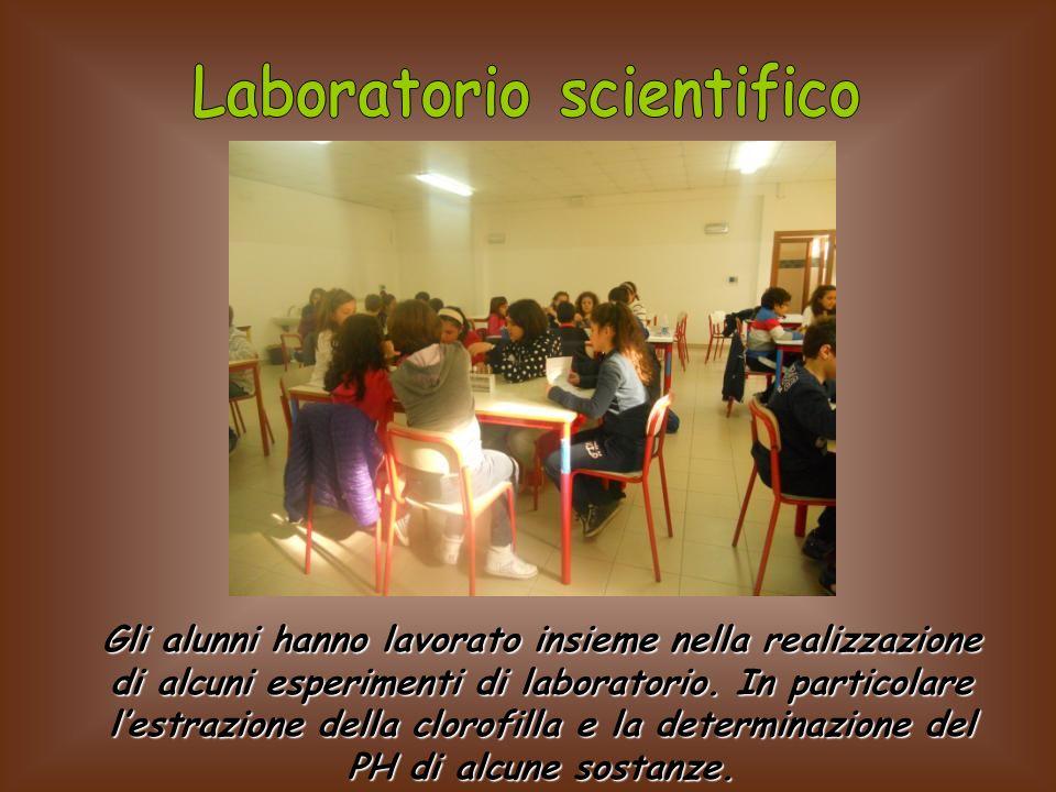 Gli alunni hanno lavorato insieme nella realizzazione di alcuni esperimenti di laboratorio. In particolare lestrazione della clorofilla e la determina