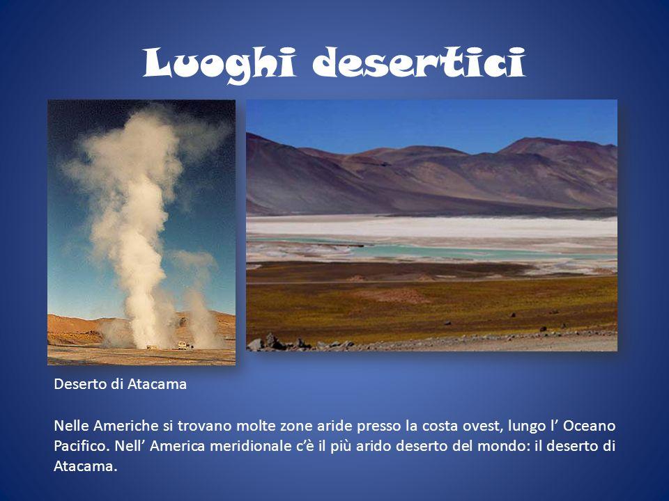 Luoghi desertici Nelle Americhe si trovano molte zone aride presso la costa ovest, lungo l Oceano Pacifico. Nell America meridionale cè il più arido d