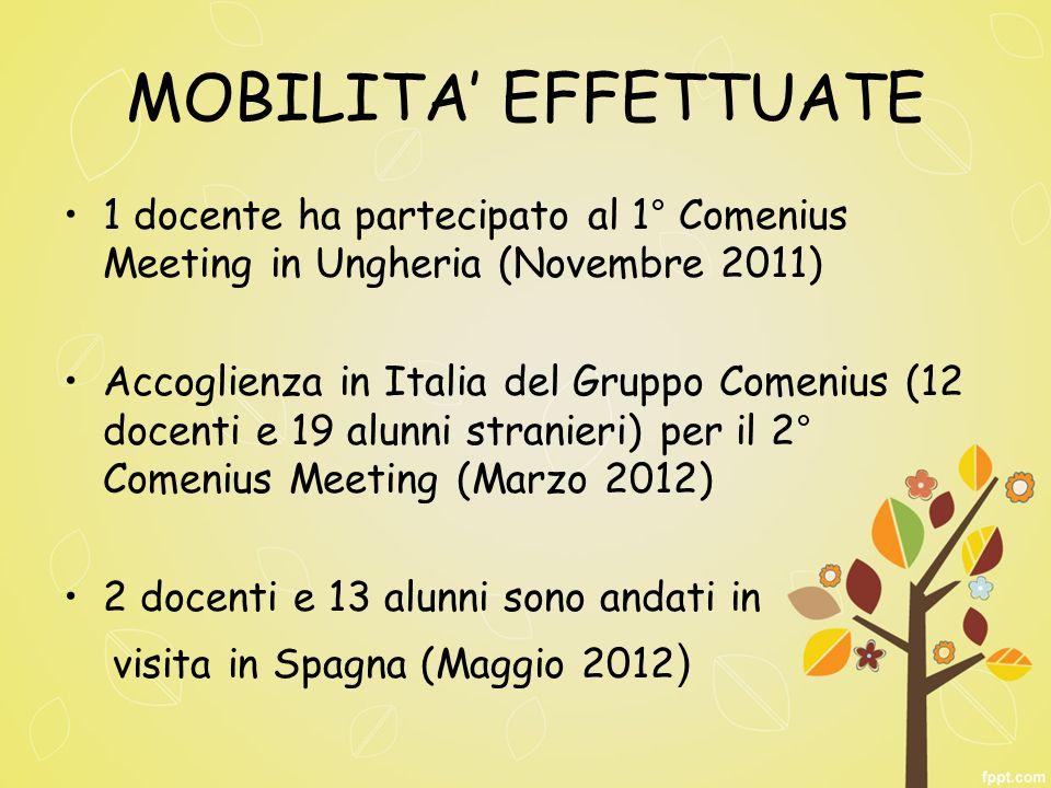 MOBILITA EFFETTUATE 1 docente ha partecipato al 1° Comenius Meeting in Ungheria (Novembre 2011) Accoglienza in Italia del Gruppo Comenius (12 docenti e 19 alunni stranieri) per il 2° Comenius Meeting (Marzo 2012) 2 docenti e 13 alunni sono andati in visita in Spagna (Maggio 2012 )