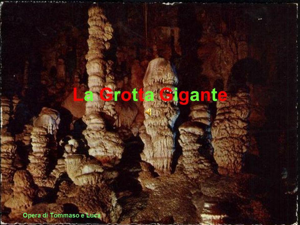 La storia La grotta è stata formata da un fiume sotterraneo.