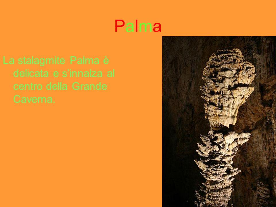 TridenteTridente Il Tridente è formata da tante stalagmiti di diverse misure.