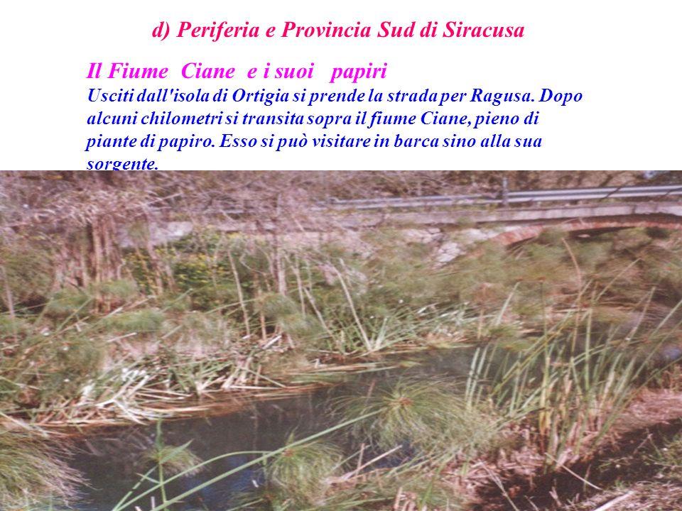 d) Periferia e Provincia Sud di Siracusa Il Fiume Ciane e i suoi papiri Usciti dall'isola di Ortigia si prende la strada per Ragusa. Dopo alcuni chilo