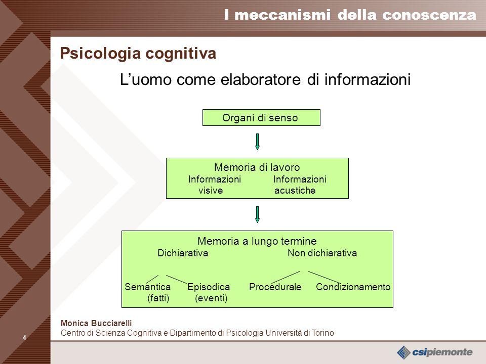 3 I meccanismi della conoscenza Monica Bucciarelli Centro di Scienza Cognitiva e Dipartimento di Psicologia Università di Torino La memoria nellera di