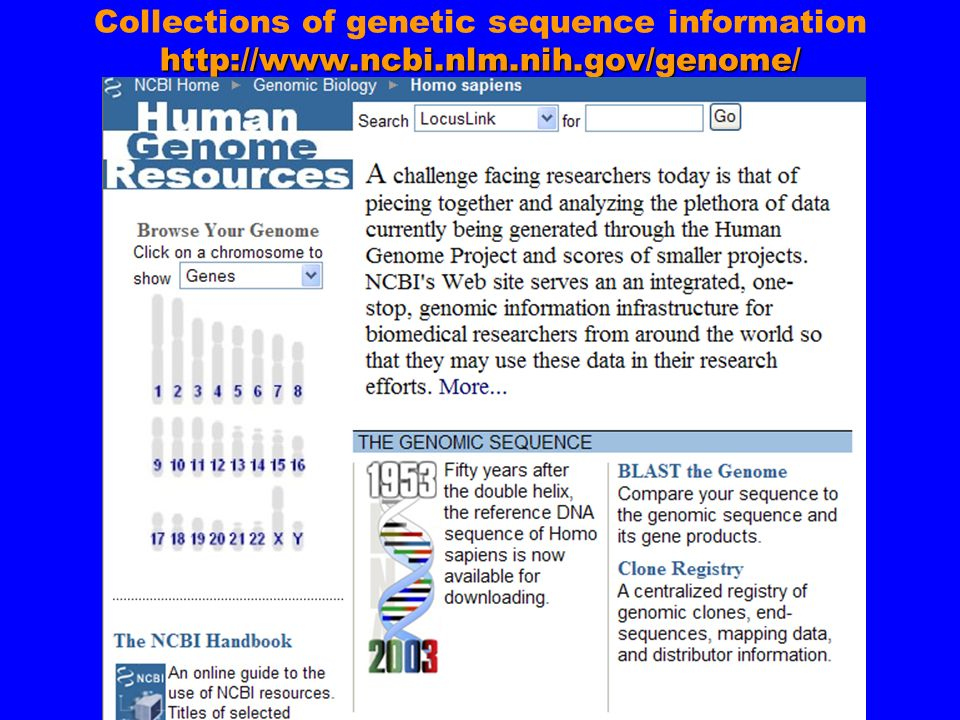 http://www.ncbi.nlm.nih.gov/genome/ Collections of genetic sequence information http://www.ncbi.nlm.nih.gov/genome/