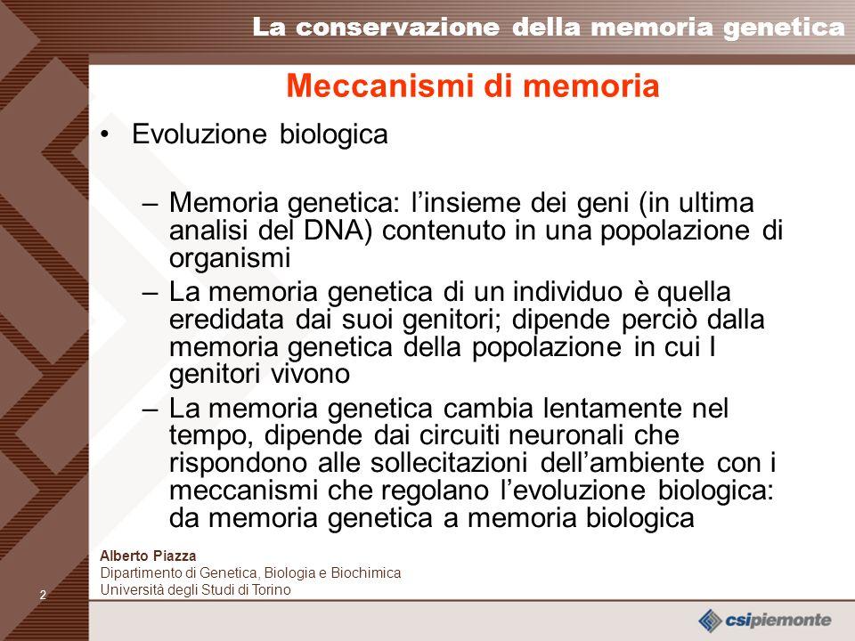 1 Alberto Piazza Dipartimento di Genetica, Biologia e Biochimica Università degli Studi di Torino La conservazione della memoria genetica Meccanismi di memoria - Evoluzione biologica - Apprendimento (evoluzione culturale)