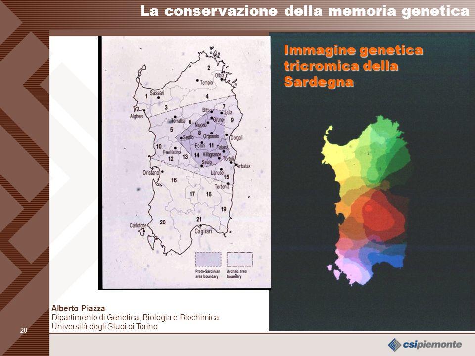 19 Cognomi, geni e lessemi in 22 domini linguistici della Sardegna CognomiLessemiGeni La conservazione della memoria genetica