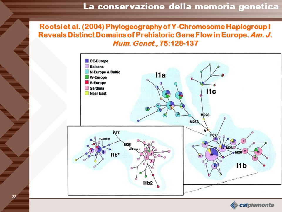 21 Zei et al. (2003) From surnames to the history of Y chromosomes: the Sardinian population as a paradigm. EJHG 11:802-7. La conservazione della memo