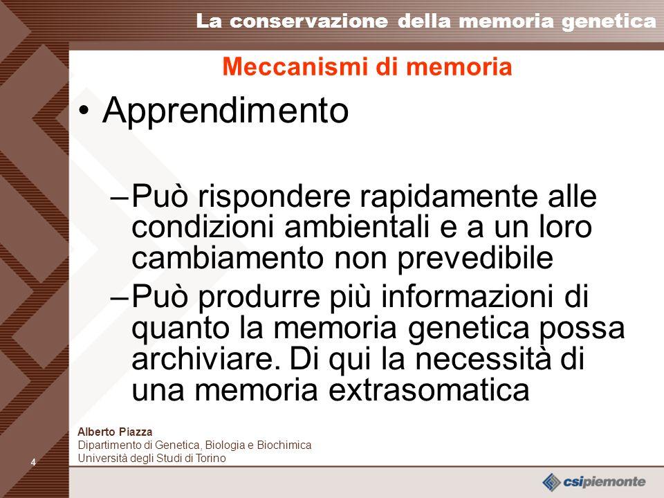 3 Meccanismi di memoria Apprendimento –La memoria biologica di ciascun individuo è inizialmente la memoria genetica ad un certo stadio di evoluzione –Cambia con lapprendimento durante il corso della vita a causa di fattori ambientali, sia biologici, sia culturali.
