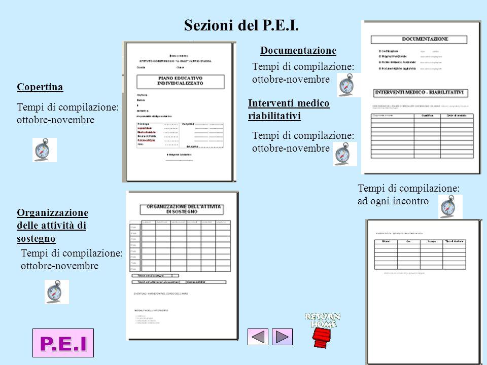 Sezioni del P.E.I.