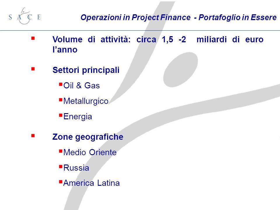 Volume di attività: circa 1,5 -2 miliardi di euro lanno Settori principali Oil & Gas Metallurgico Energia Zone geografiche Medio Oriente Russia America Latina Operazioni in Project Finance - Portafoglio in Essere