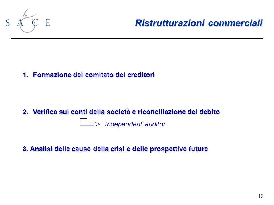 19 1.Formazione del comitato dei creditori 2.Verifica sui conti della società e riconciliazione del debito Independent auditor 3.