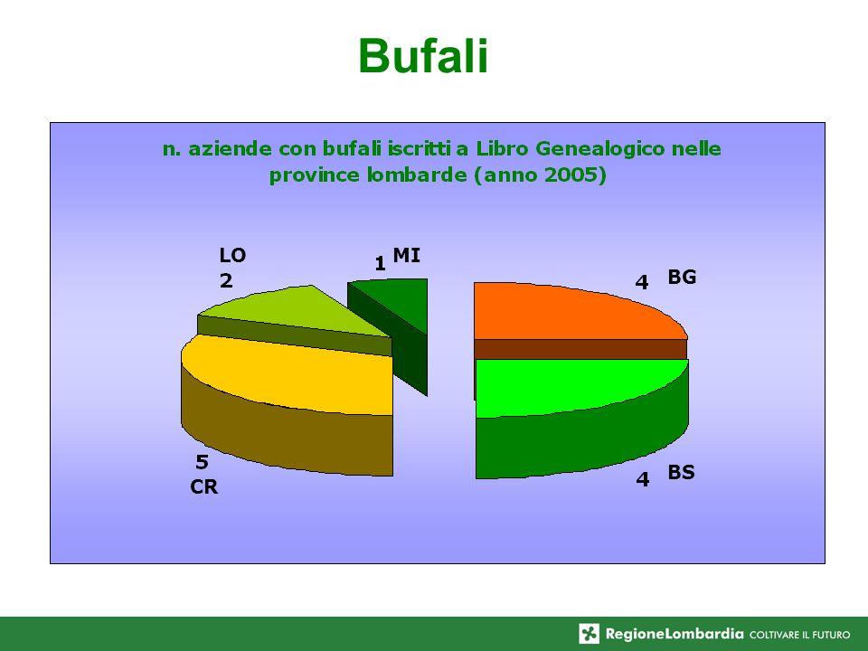 Bufali CR LOMI BG BS