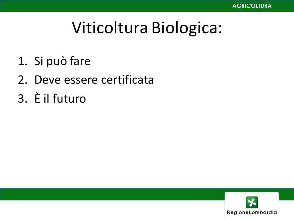 Viticoltura Biologica: 1.Si può fare 2.Deve essere certificata 3.È il futuro