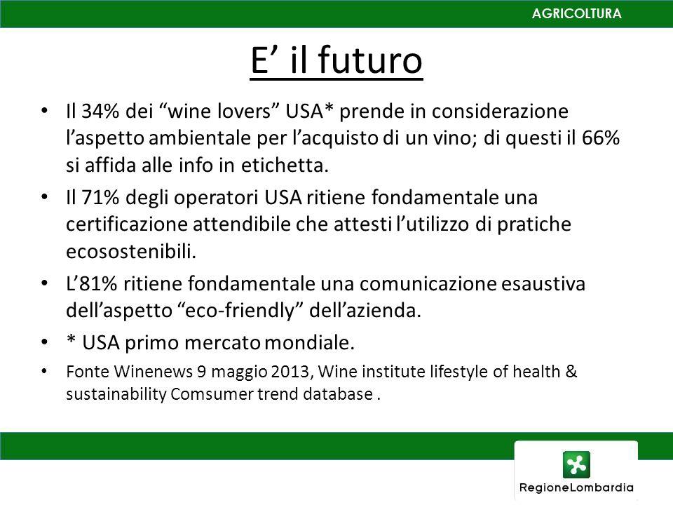 E il futuro Il 34% dei wine lovers USA* prende in considerazione laspetto ambientale per lacquisto di un vino; di questi il 66% si affida alle info in
