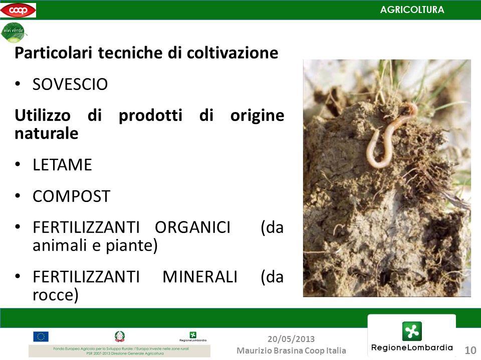 Particolari tecniche di coltivazione SOVESCIO Utilizzo di prodotti di origine naturale LETAME COMPOST FERTILIZZANTI ORGANICI (da animali e piante) FER