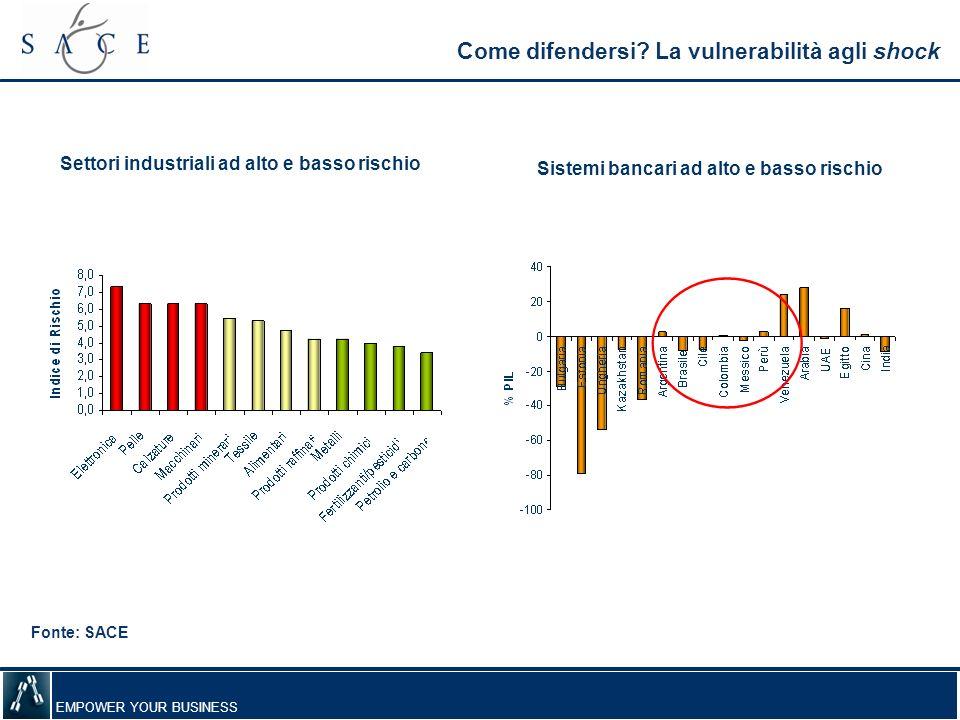 EMPOWER YOUR BUSINESS Come difendersi? La vulnerabilità agli shock Settori industriali ad alto e basso rischio Sistemi bancari ad alto e basso rischio