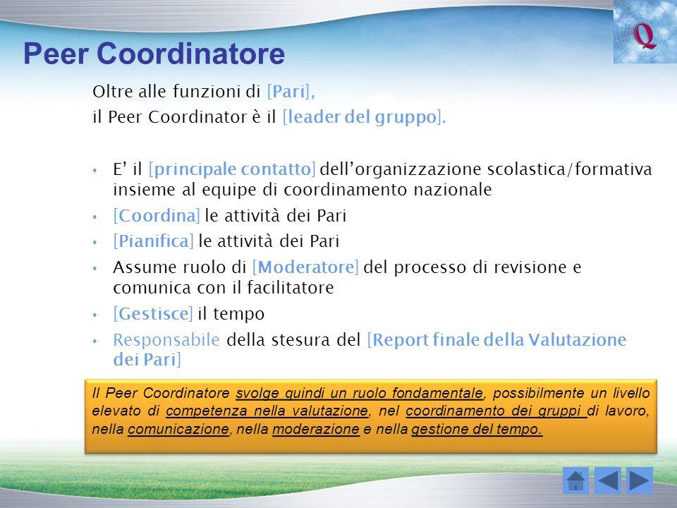 Peer Coordinatore Oltre alle funzioni di [Pari], il Peer Coordinator è il [leader del gruppo]. E il [principale contatto] dellorganizzazione scolastic
