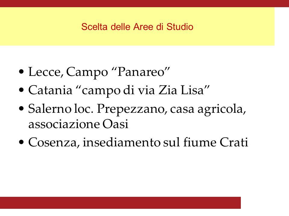 Scelta delle Aree di Studio Lecce, Campo Panareo Catania campo di via Zia Lisa Salerno loc.