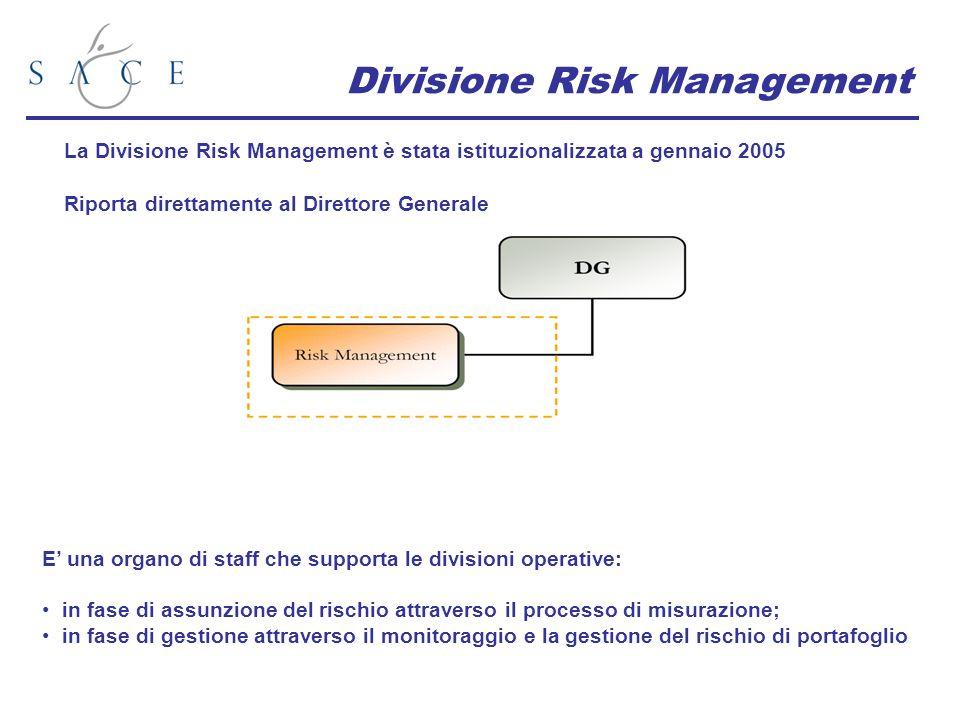 Divisione Risk Management La Divisione Risk Management è stata istituzionalizzata a gennaio 2005 Riporta direttamente al Direttore Generale E una organo di staff che supporta le divisioni operative: in fase di assunzione del rischio attraverso il processo di misurazione; in fase di gestione attraverso il monitoraggio e la gestione del rischio di portafoglio