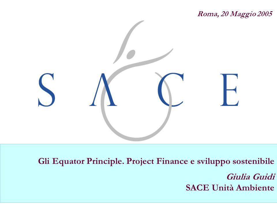 Polizza Credito Fornitore Gli Equator Principle. Project Finance e sviluppo sostenibile Giulia Guidi SACE Unità Ambiente Roma, 20 Maggio 2005