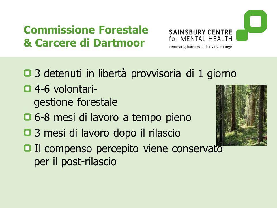 Commissione Forestale & Carcere di Dartmoor 3 detenuti in libertà provvisoria di 1 giorno 4-6 volontari- gestione forestale 6-8 mesi di lavoro a tempo pieno 3 mesi di lavoro dopo il rilascio Il compenso percepito viene conservato per il post-rilascio