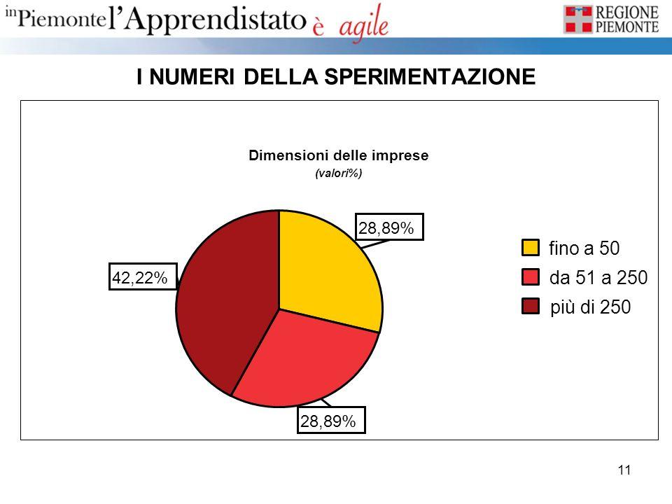 11 I NUMERI DELLA SPERIMENTAZIONE Dimensioni delle imprese (valori%) 42,22% 28,89% più di 250 da 51 a 250 fino a 50
