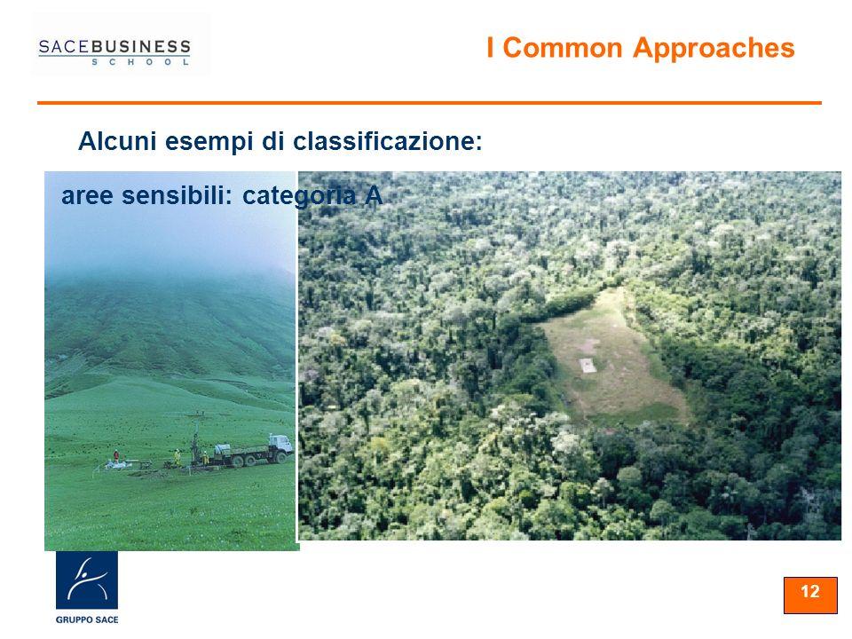 12 Alcuni esempi di classificazione: I Common Approaches aree sensibili: categoria A