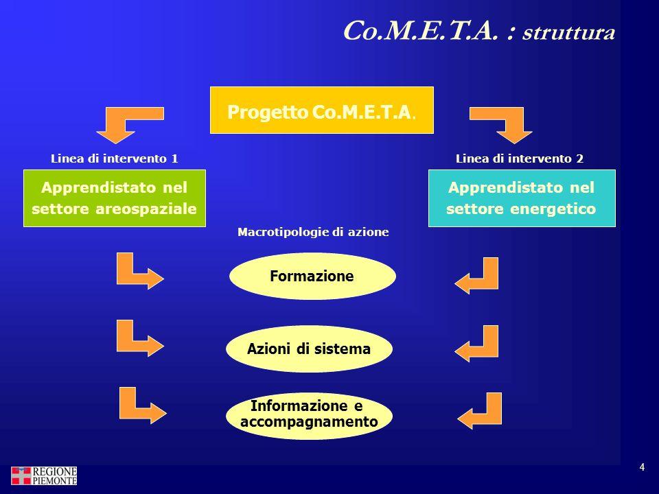4 Co.M.E.T.A. : struttura Progetto Co.M.E.T.A.
