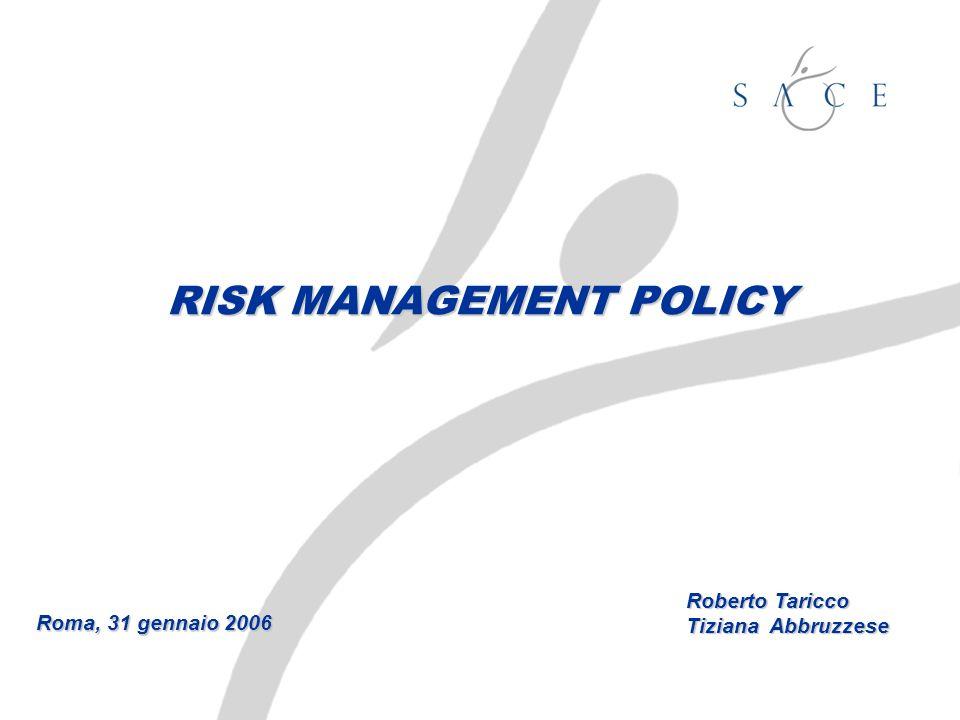RISK MANAGEMENT POLICY Roma, 31 gennaio 2006 Roberto Taricco Tiziana Abbruzzese