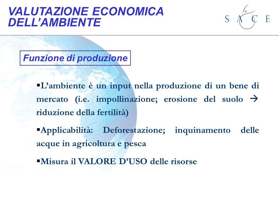 Funzione di produzione Lambiente è un input nella produzione di un bene di mercato (i.e. impollinazione; erosione del suolo riduzione della fertilità)