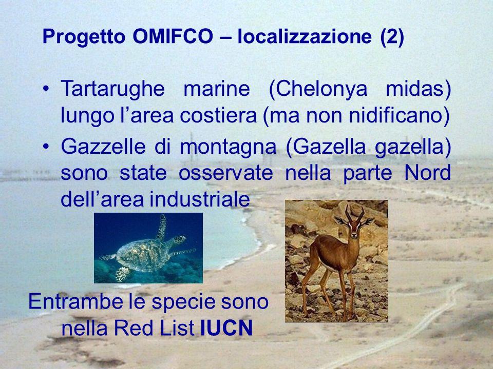 Tartarughe marine (Chelonya midas) lungo larea costiera (ma non nidificano) Gazzelle di montagna (Gazella gazella) sono state osservate nella parte Nord dellarea industriale Entrambe le specie sono nella Red List IUCN Progetto OMIFCO – localizzazione (2)