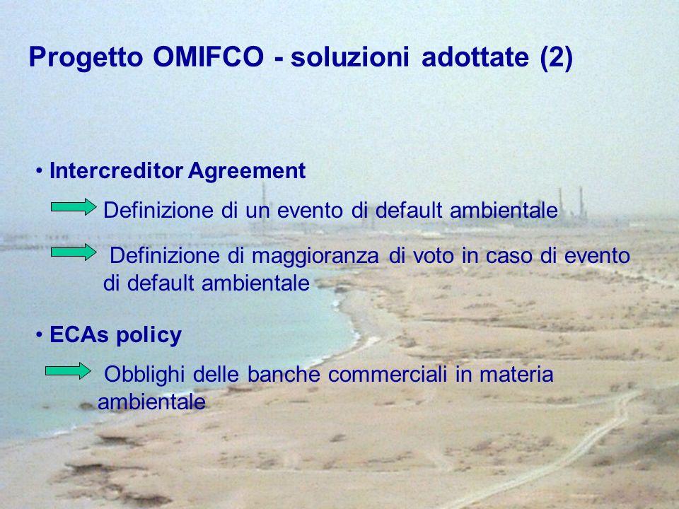 Intercreditor Agreement Definizione di un evento di default ambientale Definizione di maggioranza di voto in caso di evento di default ambientale ECAs policy Obblighi delle banche commerciali in materia ambientale Progetto OMIFCO - soluzioni adottate (2)