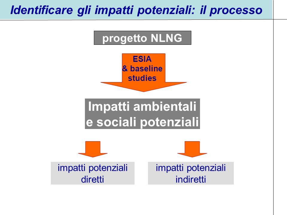 Identificare gli impatti potenziali: il processo impatti potenziali indiretti Impatti ambientali e sociali potenziali impatti potenziali diretti proge
