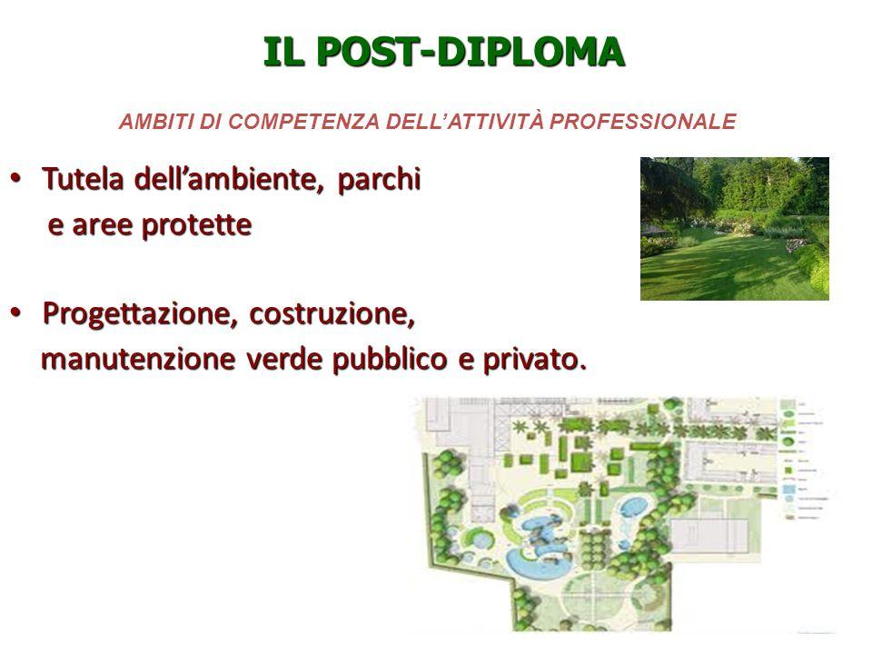 AMBITI DI COMPETENZA DELLATTIVITÀ PROFESSIONALE Tutela dellambiente, parchi Tutela dellambiente, parchi e aree protette e aree protette Progettazione,