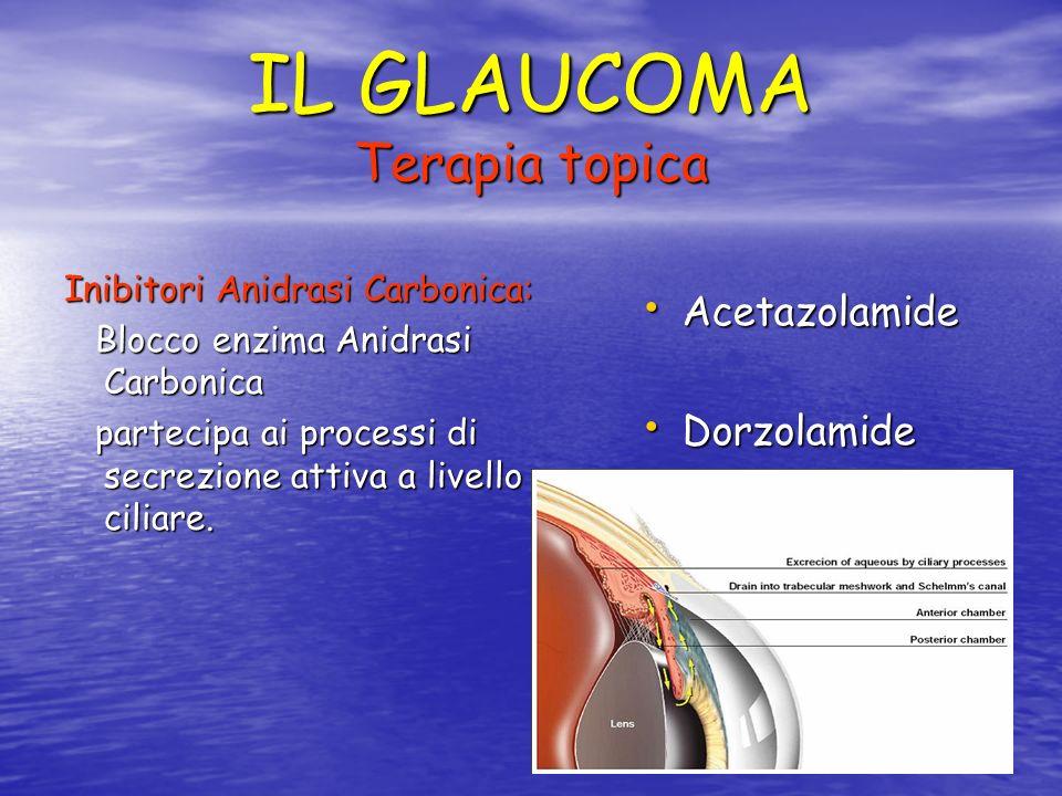 IL GLAUCOMA Terapia topica Analoghi delle Prostaglandine: Analoghi delle Prostaglandine: Deflusso Uveo sclerale.