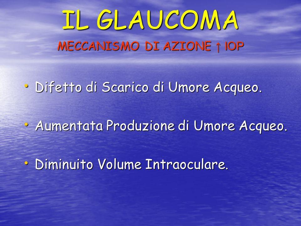 IL GLAUCOMA TIPI DI GLAUCOMA Glaucoma Congenito, Infantile, Giovanile.