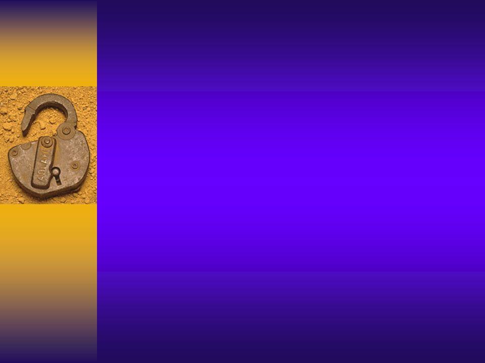 Storia e Teoria dell Infermieristica Storia dellAssistenza Infermieristica