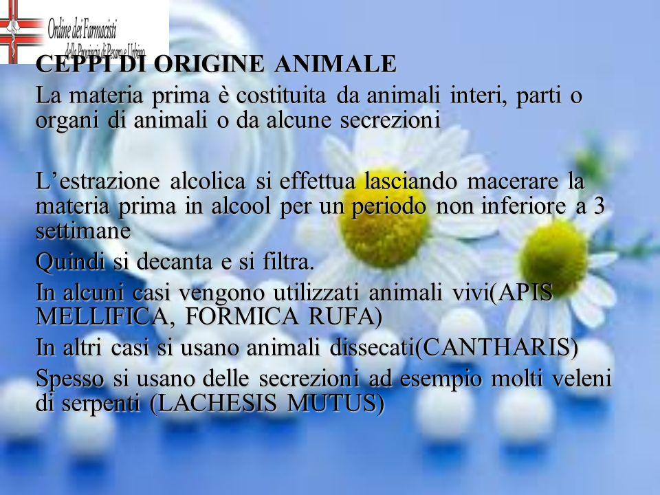 CEPPI DI ORIGINE ANIMALE La materia prima è costituita da animali interi, parti o organi di animali o da alcune secrezioni Lestrazione alcolica si eff