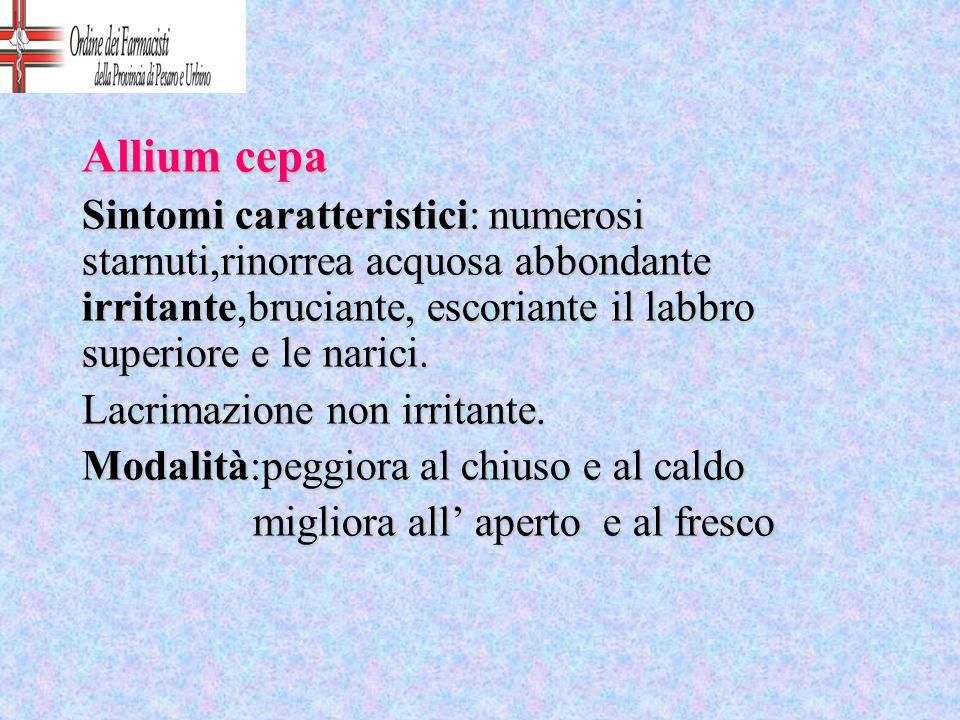 Allium cepa Sintomi caratteristici: numerosi starnuti,rinorrea acquosa abbondante irritante,bruciante, escoriante il labbro superiore e le narici. Lac