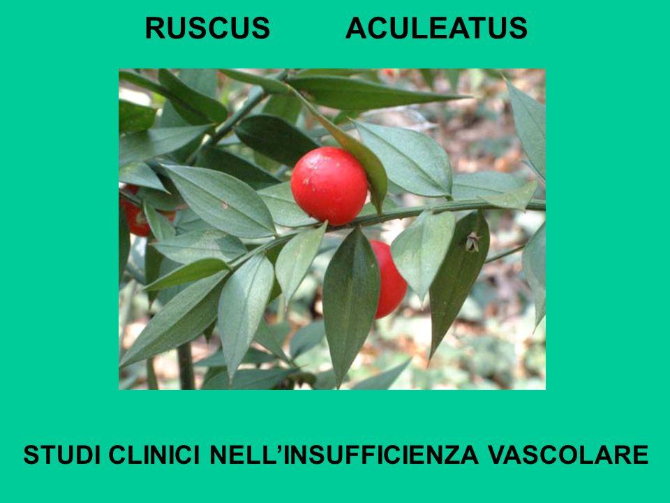 RUSCUS ACULEATUS STUDI CLINICI NELLINSUFFICIENZA VASCOLARE