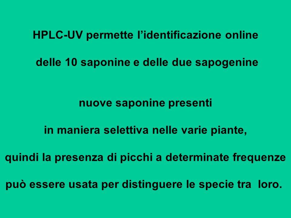 HPLC-UV permette lidentificazione online delle 10 saponine e delle due sapogenine nuove saponine presenti in maniera selettiva nelle varie piante, qui